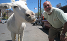 Sal's not the only one in Oatman, AZ who likes to ham it up for the camera.